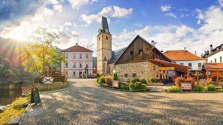 Šumava přímo pod hradem Rožmberk: Hotel U Martina *** s privátním wellness se sektem, polopenzí a koktejlem