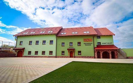 Jižní Morava: Penzion a vinný sklep Čičina