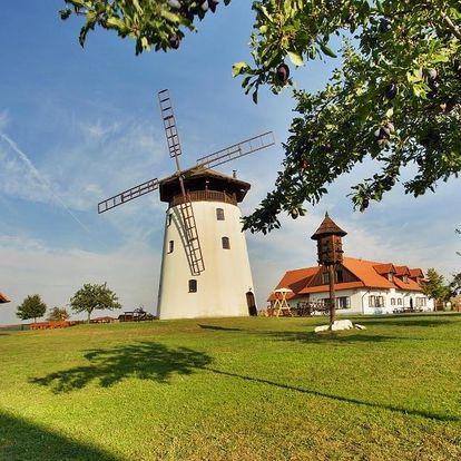Jižní Morava: Bukovanský mlýn