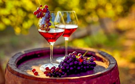 Jižní Morava: Penzion V Zahraničí s neomezenou konzumací vína, večerem s hudbou a polopenzí + 2 děti zdarma