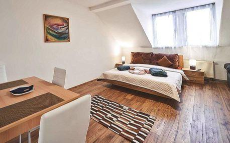 Plně vybavené apartmány ve Varech až pro 5 osob