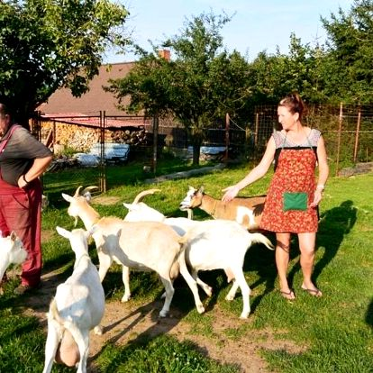 Středočeský kraj: Františkova farma