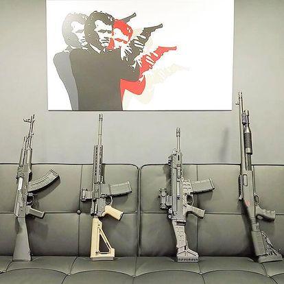 Střelba z pušek