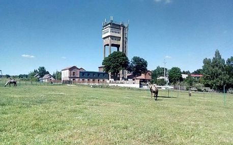 Příbram, Středočeský kraj: Hornický penzion