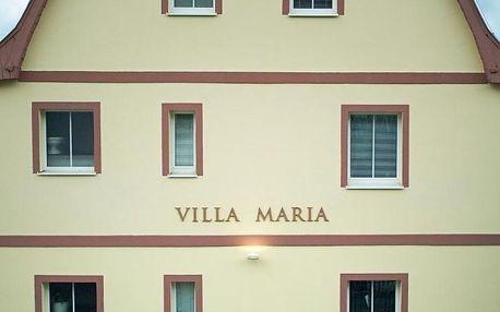 Karlovarský kraj: Pension Villa Maria