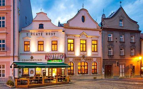 Jindřichův Hradec: Hotel Concertino - Zlatá Husa **** se snídaněmi, privátní saunou a slevou na proceduru
