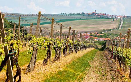 Vinné sklepy u Lednice: polopenze i koštování vína