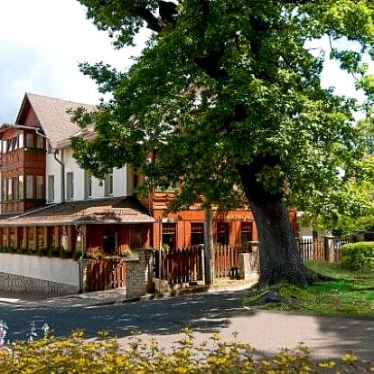 Polsko blízko aquaparku: Hotel Świeradów *** se vstupy do solné jeskyně a slevou na procedury + polopenze