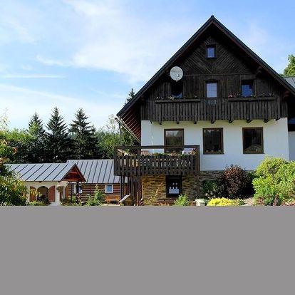 Rokytnice nad Jizerou, Liberecký kraj: Apartmany Silver