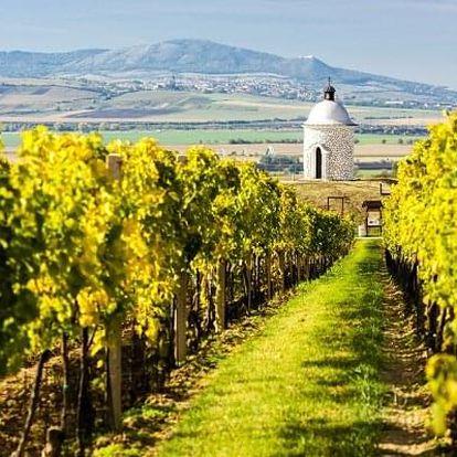 Pěšky za moravským vínem