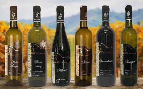 3 nebo 6 lahví z vinařství Dvůr pod Starýma horama
