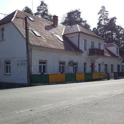 Plzeňsko: Penzion Zelený Háj