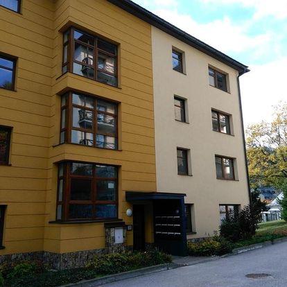 Janské Lázně, Královéhradecký kraj: Apartmán Maruška
