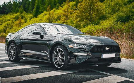 Zkroťte Mustanga: 20 a 40 min. jízdy či 3hod. pronájem