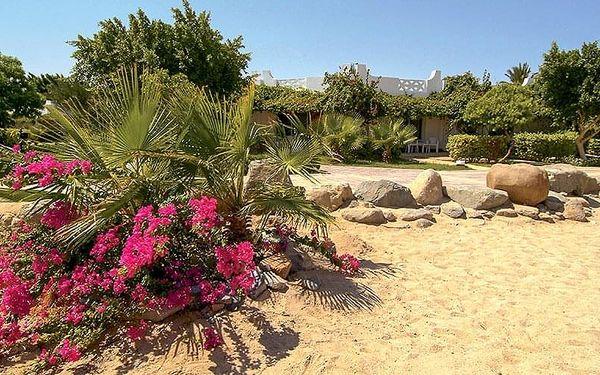 Hotel Shams Safaga, Hurghada, letecky, all inclusive4