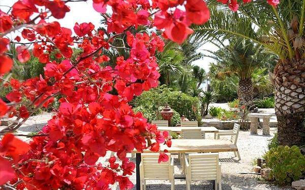 Medusa Beach Resort, Naxos, Řecko, Naxos, letecky, snídaně v ceně4