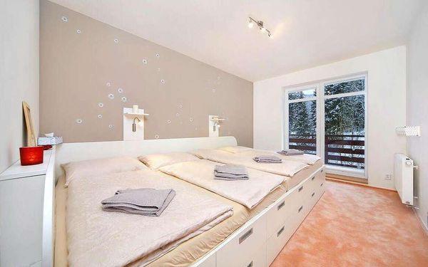Apartment Labská - Holiday Dream