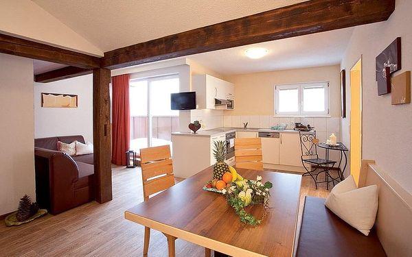 Appartementhaus Fliana, Tyrolsko, vlastní doprava, bez stravy4