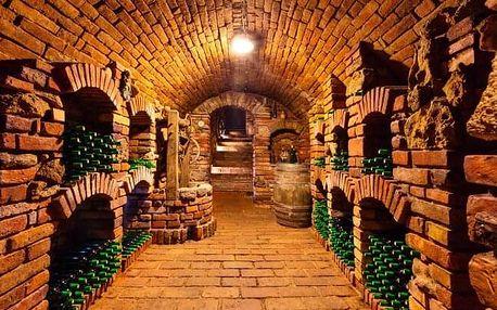 Jižní Morava: Pobyt pro milovníky vína v Penzionu Zaječák s polopenzí a degustací místních vín