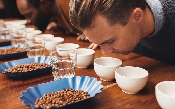 Vše o kávě ve 4 hod. teoretickém i praktickém kurzu