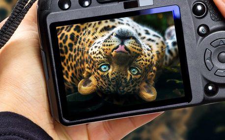 Fotografický kurz v zoo s Patrikem Staňkem
