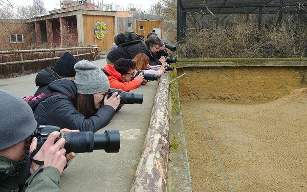 Fotografický kurz v českých zoo s Patrikem Staňkem3