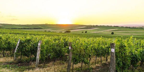Dárkový balíček šesti druhů moravských zemských vín + videodegustace se someliérem, U vás doma, 6 lahví vína + videodegustace + doručení po ČR4