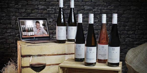Dárkový balíček šesti druhů moravských zemských vín + videodegustace se someliérem
