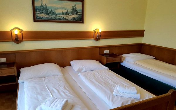 Landgasthof Torrenerhof, Alpy a jezera - Rakousko, vlastní doprava, all inclusive4