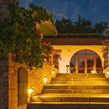 Kouzelný pobyt na jižní Moravě s polopenzí i vínem