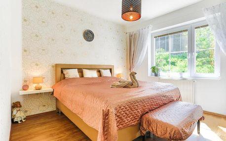 Karlovy Vary: Apartment Carla