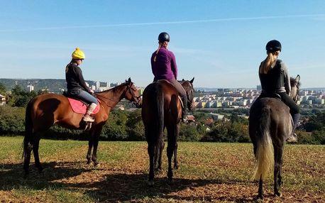 Jízda na koni pro děti, dospělé i rodiny