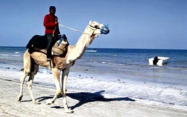 EDEN STAR, Zarzis, Tunisko, Zarzis, letecky, all inclusive2