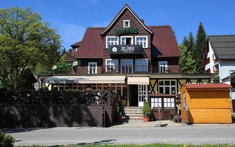 Královohradecký kraj: Hotel Jelinek