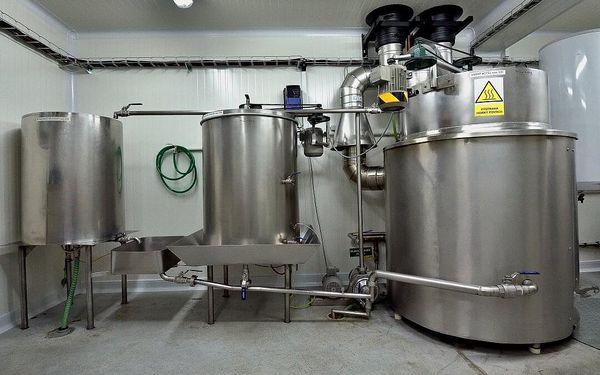 Prohlídka pivovaru s degustací mladých piv pro jednoho4