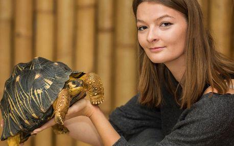 VIP návštěva želv v Krokodýlí Zoo pro 1 či 2 os.