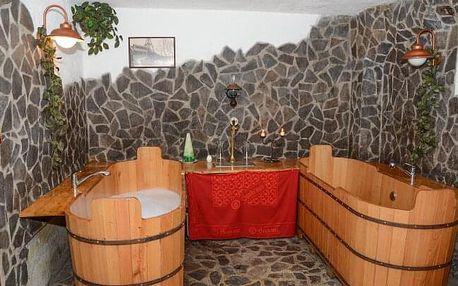 CHKO Žďárské vrchy v Penzionu U Čtyřlístku s pivní koupelí + konzumace piva a privátním wellness se sektem