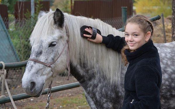 Pony Ranch - Proseč nad Nisou