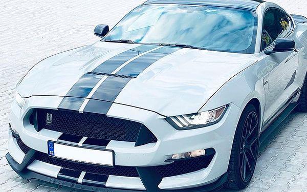 Jízda ve Ford Mustang GT350 SHELBY