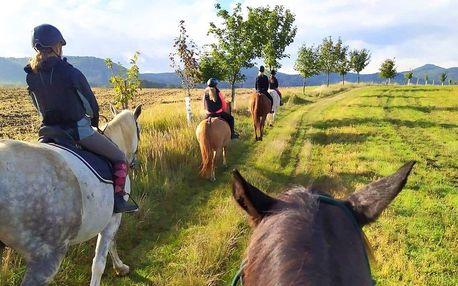 Vyjížďka na koni a vstup do minizoo pro 1 i 2 os.