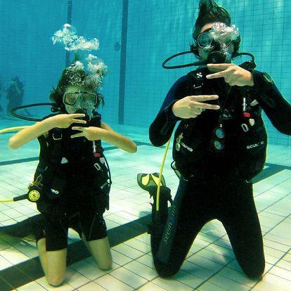 Potápění na zkoušku pro začátečníky i pokročilé