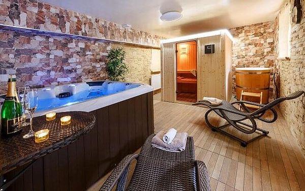 Šumava u turistických stezek v Apartmánech Andrea se snídaní, privátním wellness a relaxačními procedurami