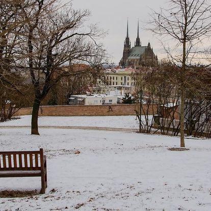 Pohodový pobyt v Brně se snídaní i polopenzí
