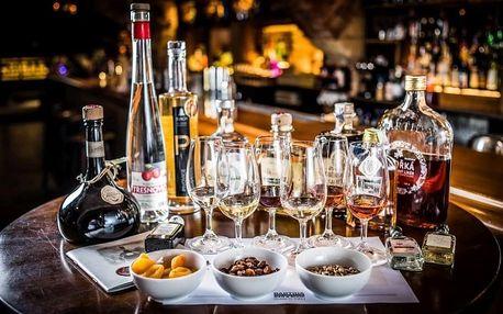 Degustace 6 druhů pálenek, likérů nebo ginů od Alkohologa v Praze