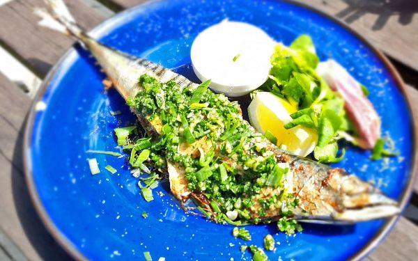 Rybářská bašta Svěcený - Restaurace, Penzion