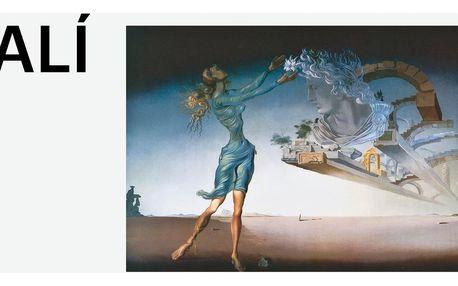 Vstupenky na novou výstavu Salvadora Dalího