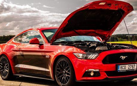 Zkroťte 850 koní: jízda v nadupaném Fordu Mustang GT