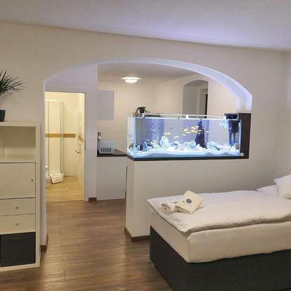 Český ráj: SLO. Apartments