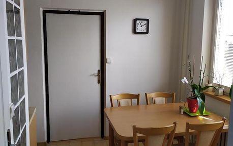 Břeclav, Jihomoravský kraj: Apartmán Jan