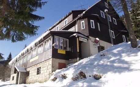 Krkonoše: Horský hotel Flora